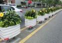 景观花箱为城市环境添彩
