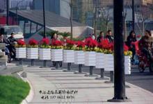 长沙火车南站西广场交通岛移动式立体绿化完工