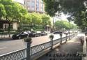 山东省出台城市园林绿化服务业转型升级实施方案