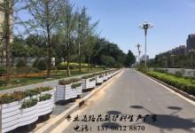 南宁将新增立体绿化20万平方米 桥梁成为亮丽风景