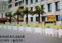景洪市扮靓城市园林绿化景观 百余花箱取代传统隔离栏