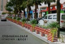 上饶市逐步推进城市序化管理